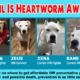 Heartworm Awareness Month