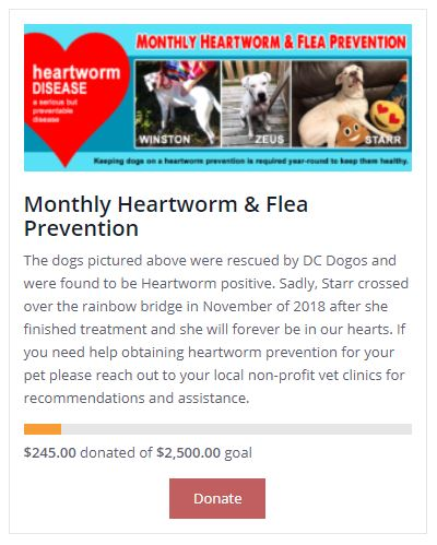 Heart Worm Prevention