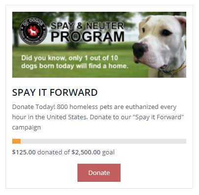 spay it forward